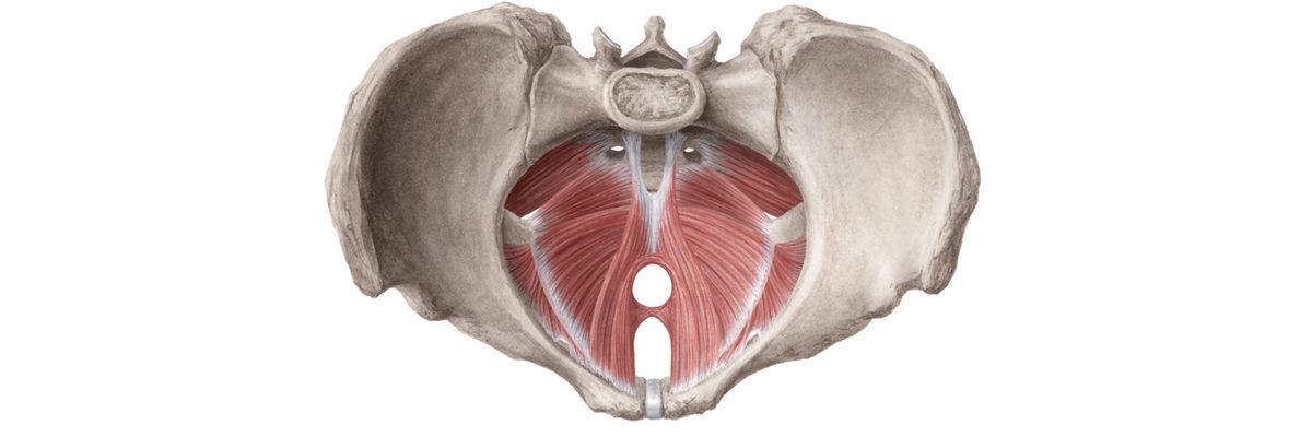 Vaginismus-1200x400.jpg